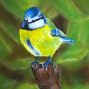 Blue Tit Art Workshop
