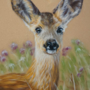 Roe Deer Art Kit