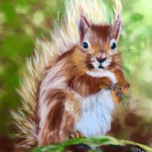 Red Squirrel art