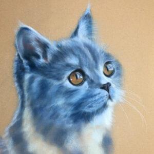 Blue Cat Pastel Art Kit