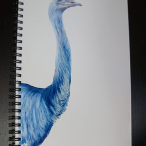 Blue Ostrich Sketchbook
