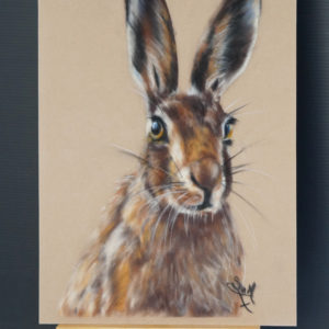 Hare Art Kit