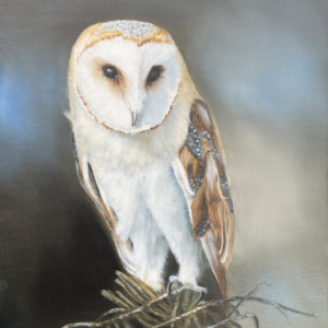 Barn Owl Oil Painting